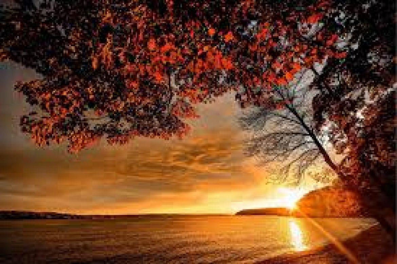 Autumn Tides Massage