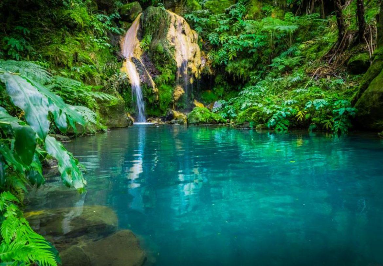 Healing Springs Massage